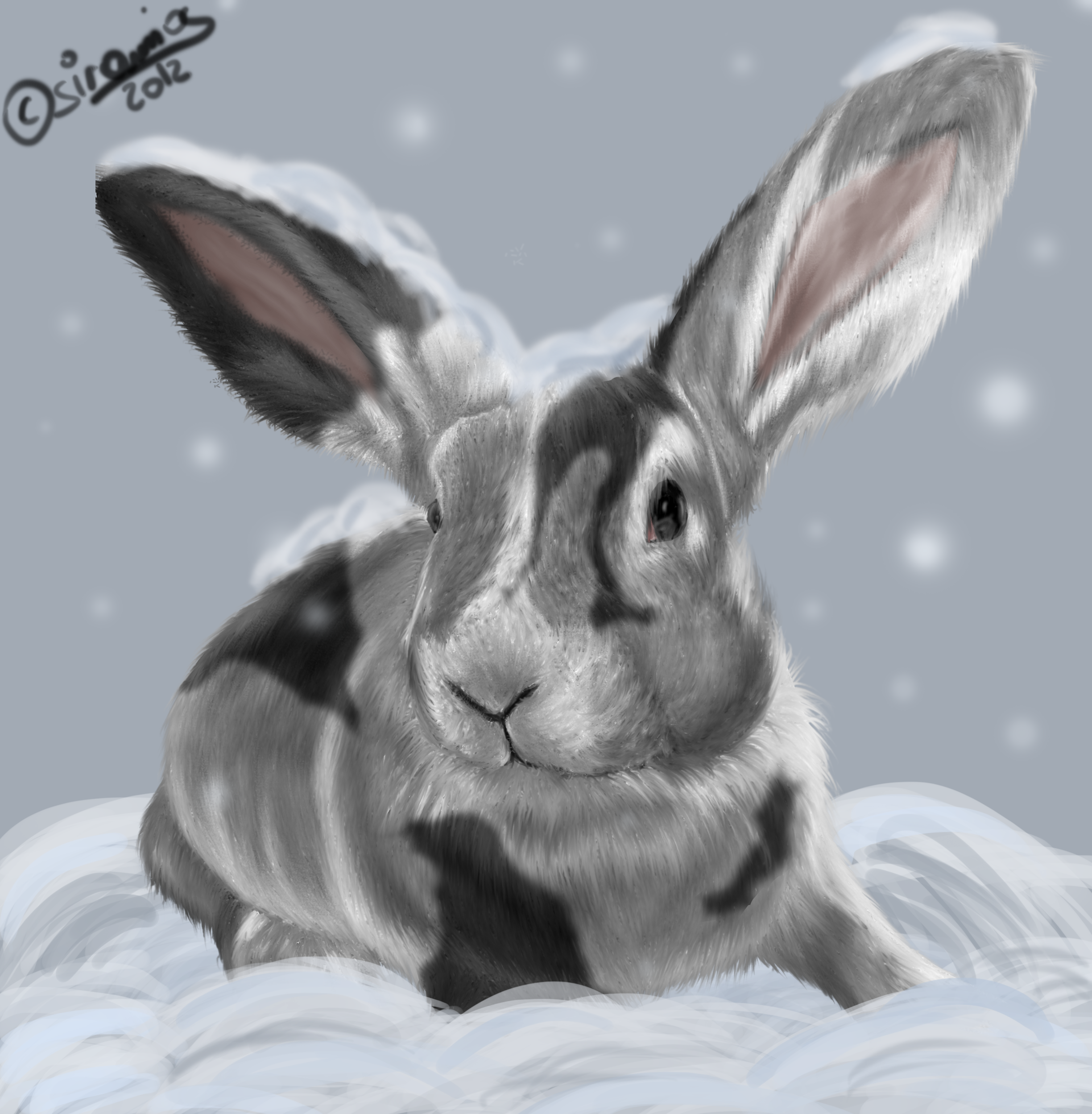 Snow-Rabbit [Christmas Gift] by siramios