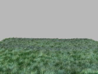 Grass by SUBWAYJAROD