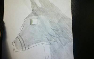 Hand drawn Unknown by LoveIsForeverAlways