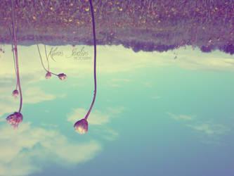 Flowers In The Sky by blue-angel36