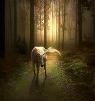 The last unicorn by maariusz