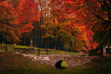 Walk in the park by maariusz
