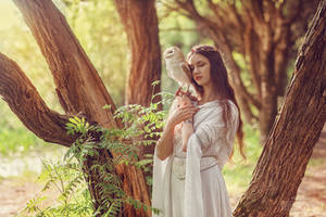 Elf and owlet (2)