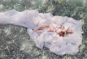 Spring soul IV by Swan-Lake