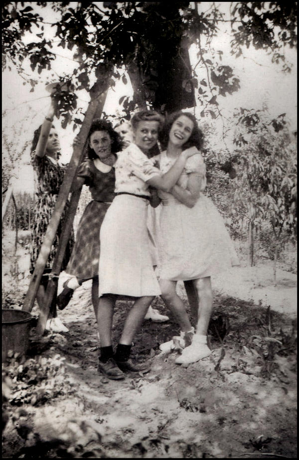 Picking during summer, 1945 by SUDOR