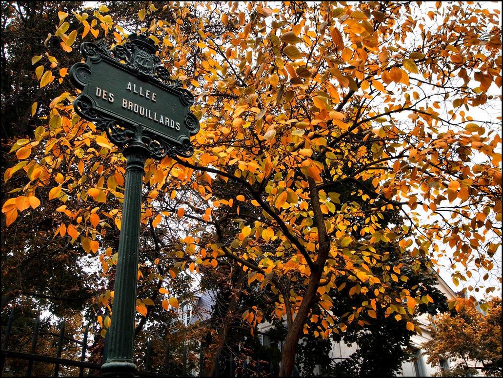 Montmartre in October - 50 by SUDOR