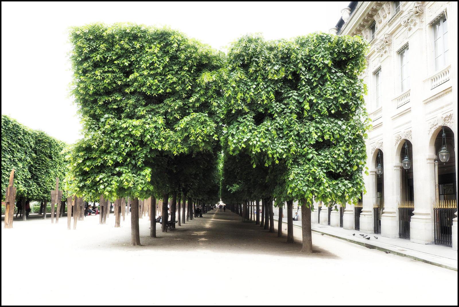 Jardin du palais royal by sudor on deviantart for Art du jardin zbinden sa