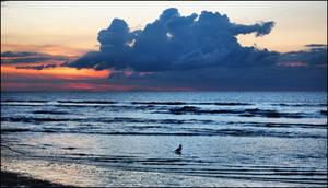 Deauville Beach - 2