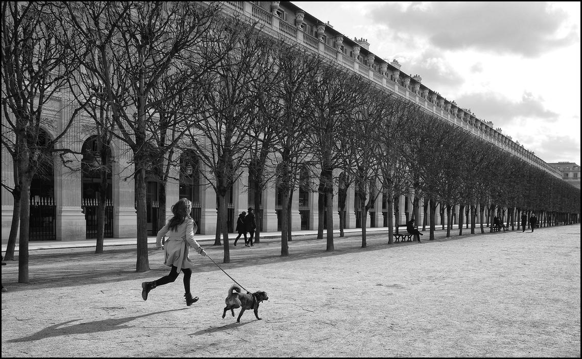 Jardin du Palais-Royal - Paris by SUDOR on DeviantArt