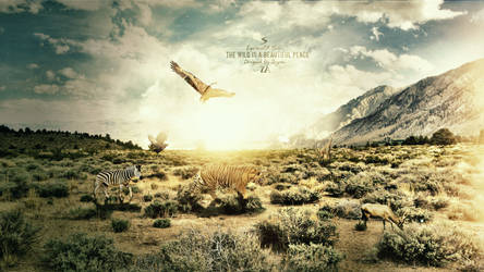 The Wild V2