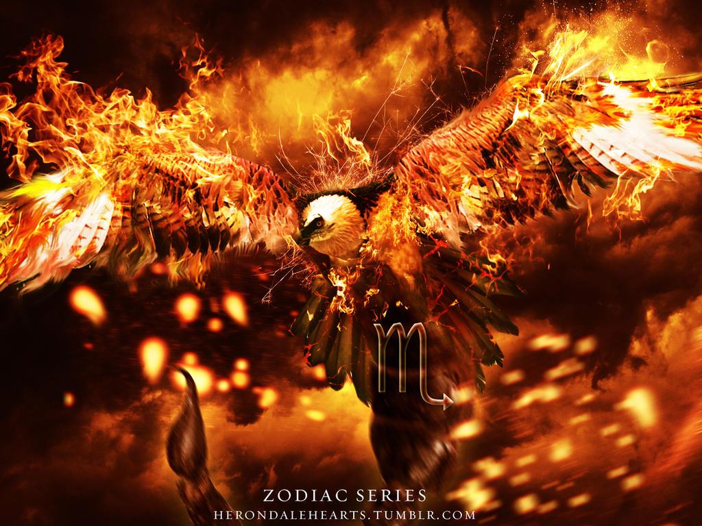 Scorpio Phoenix by WolfRyder42
