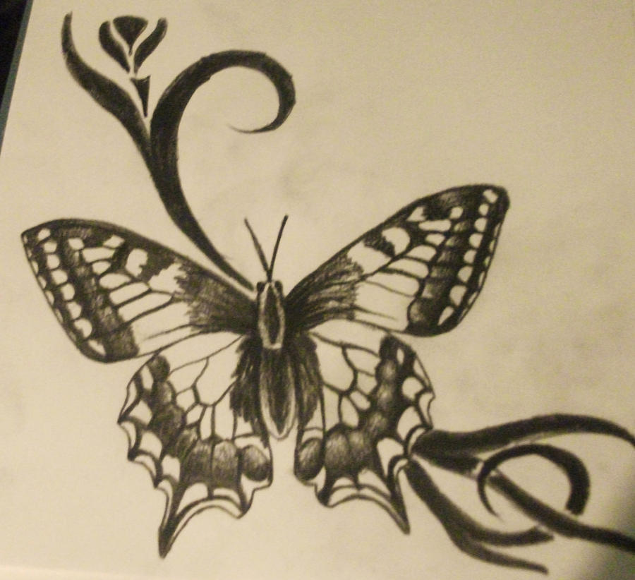 It's just a graphic of Gorgeous Butterfly Drawing Tumblr