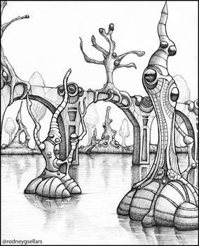 A Strange Swamp