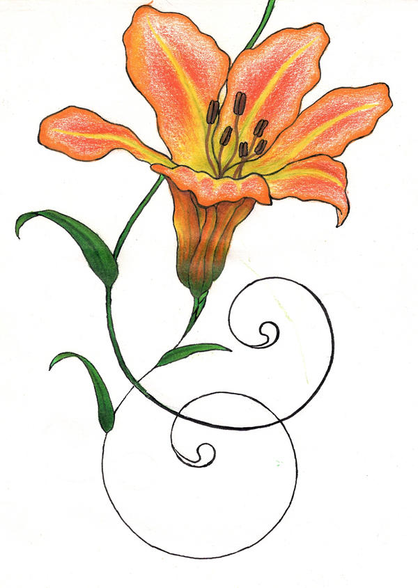 Tiger Lily 3rd Phase orange by Phoenixfeather54 on DeviantArt