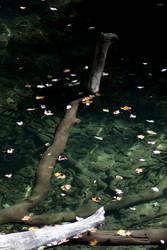 Underwater by AngelsKnight70