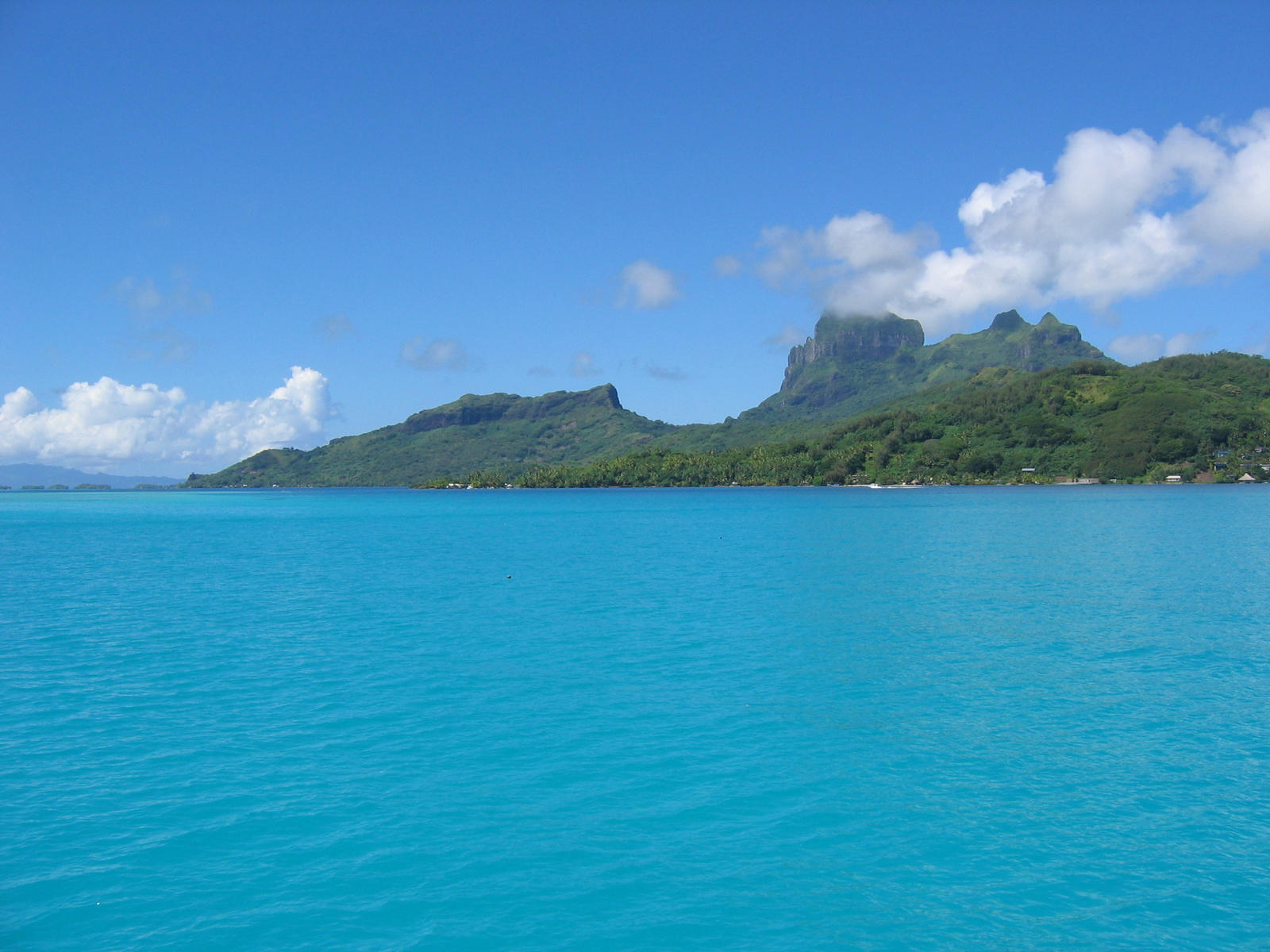 French polynesian islands ho4 by frenchcuisine on deviantart for Art cuisine tahiti