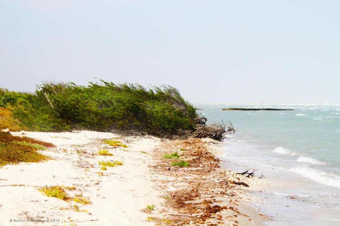 Junk onna beach by TokiiWorks