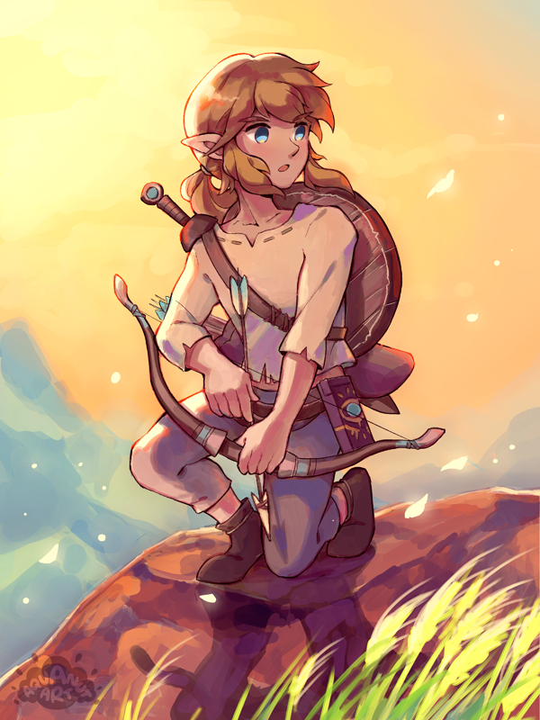 Breath Of The Wild Link By Aquanut On Deviantart