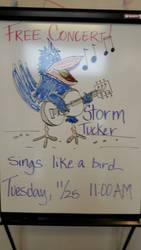 Eraser board bird by originalwillow