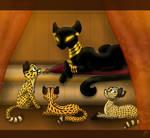 Sha of the cheetahs: Nuru