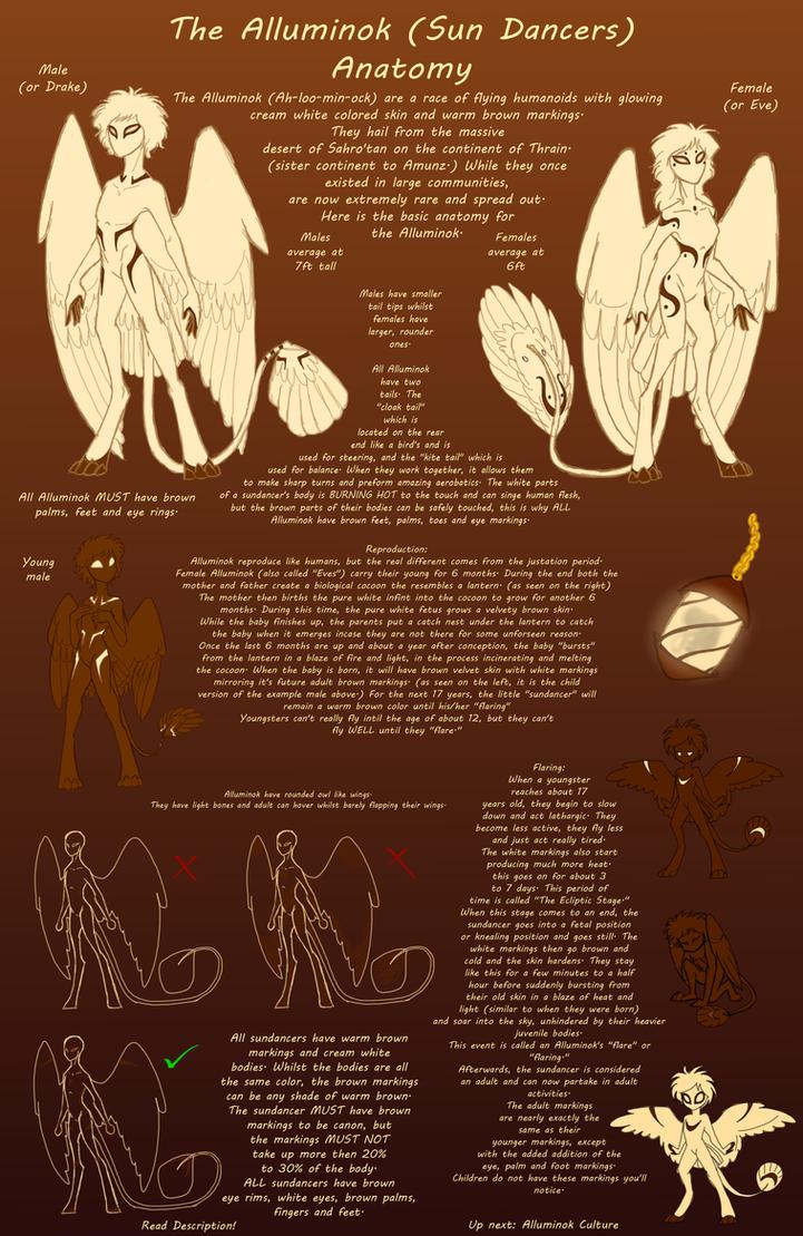 Alluminok (SunDancer) Anatomy :CLOSED SPECIES: by CoffeeAddictedDragon