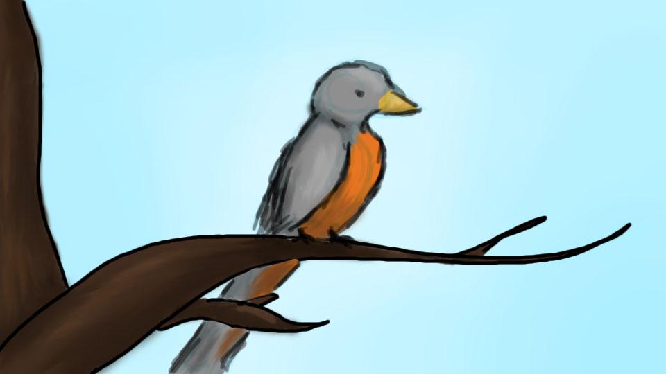 Robin by khimerra