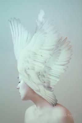 [19] Lady-bird