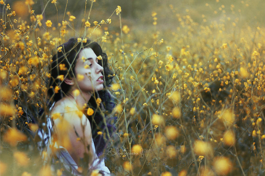 My flower kingdom by starg691