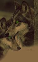 Valesha by alpoxwolf