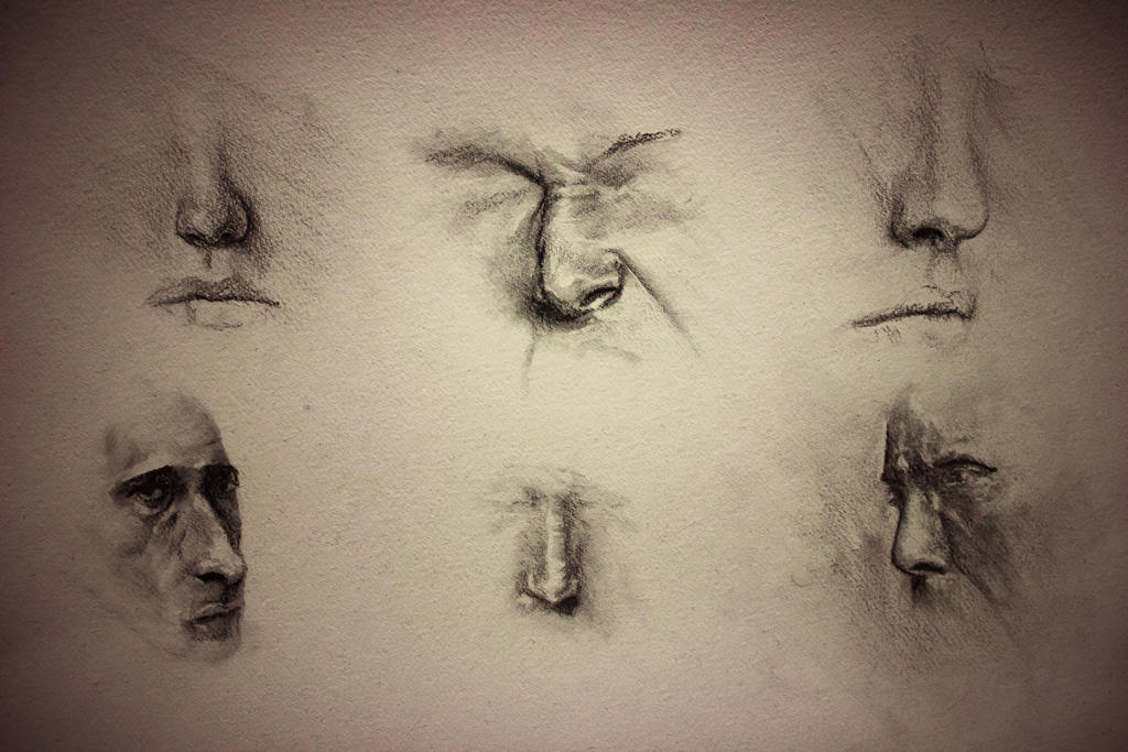 Noses studies by Helroir