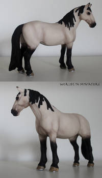 Tennessee Walker special edition