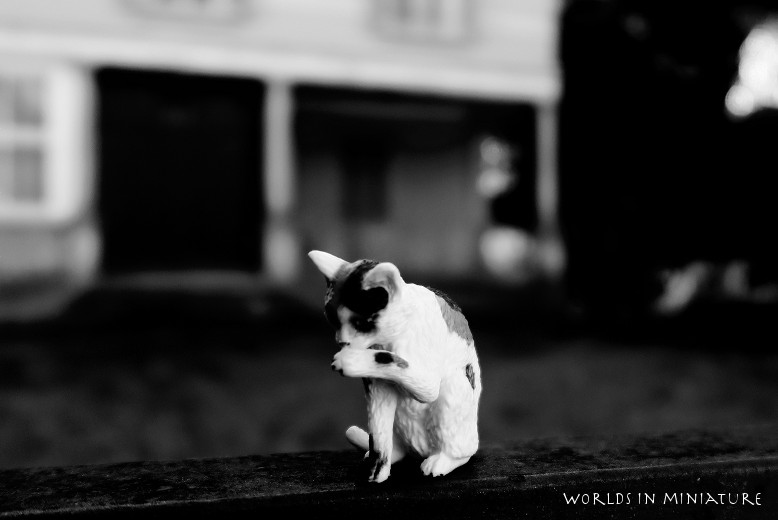 The cat returns by Worlds-in-Miniature