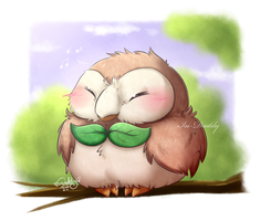 Pokemon - Rowlet by Isi-Daddy
