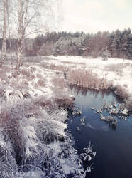 North view by DarkBrownie