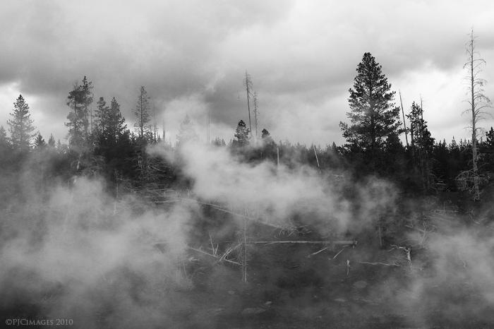 The mist by PeterJCoskun