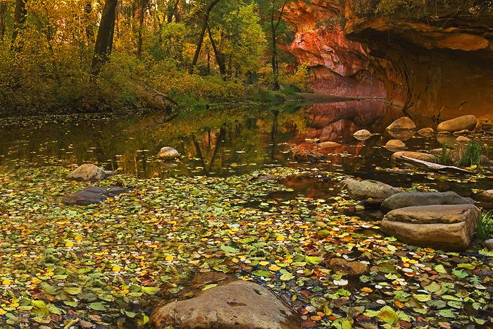West fork oak creek canyon by PeterJCoskun