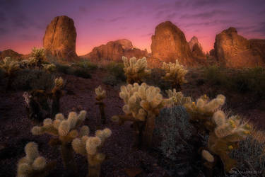 Kofa Twilight by PeterJCoskun