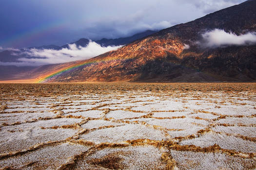 Badwater Bow