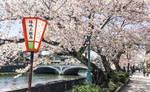 Asano River Kanazawa japan