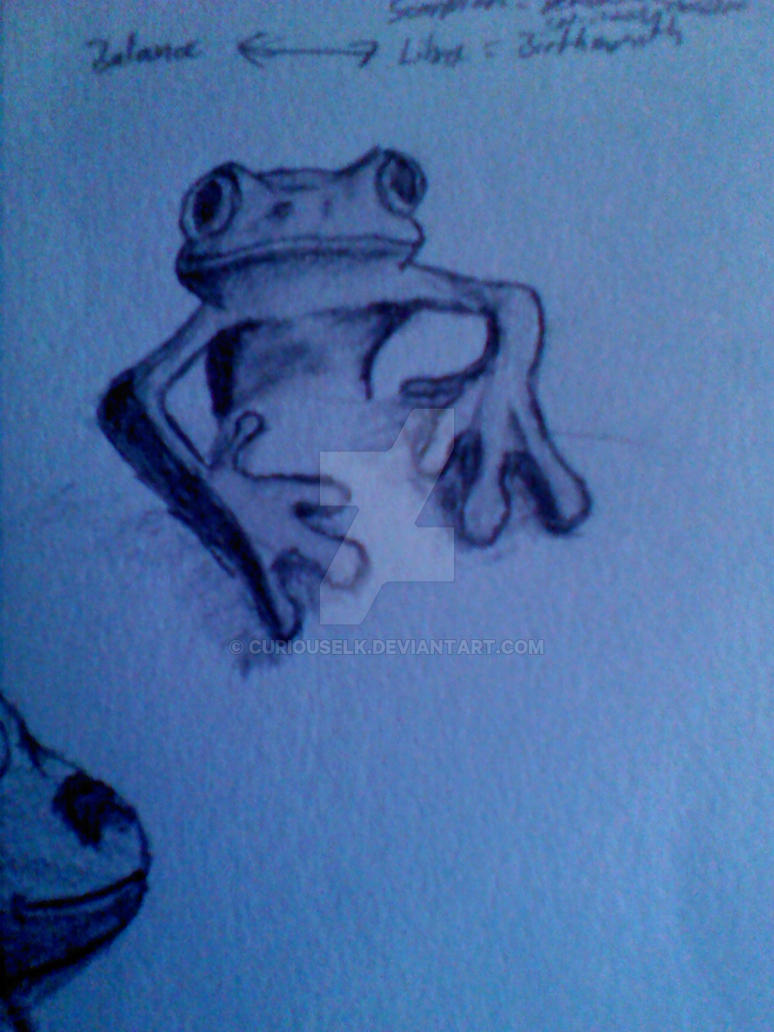 frog doodle by CuriousElk