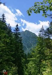 Far Away Mountain