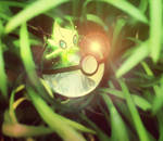 Celebi  Pokeball