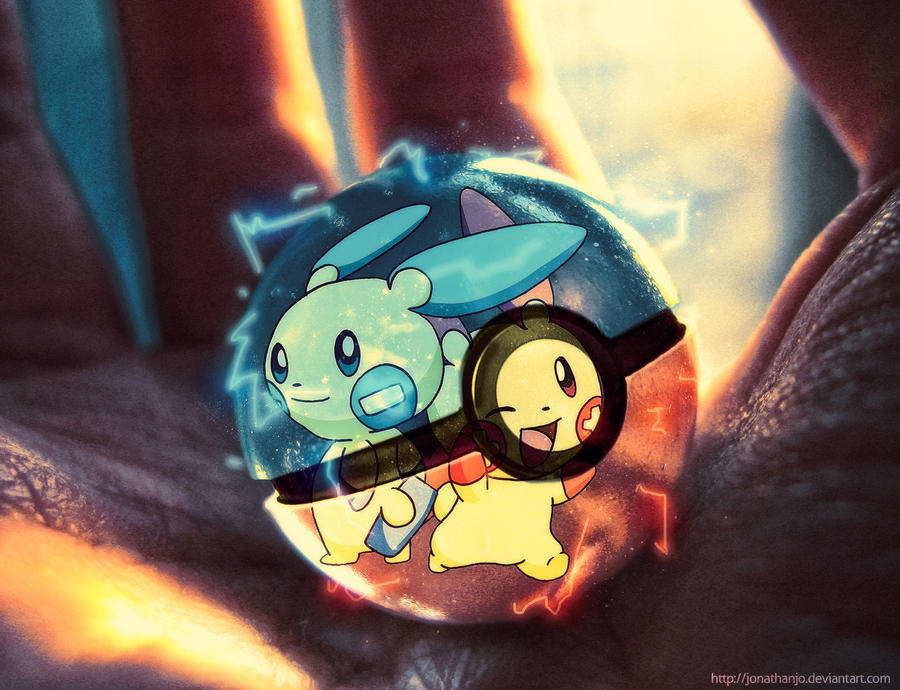 Plusle And Minun Wallpaper Plusle and Minun in a ...
