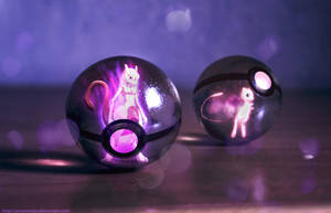 Mew and Mewtwo into pokeballs by Jonathanjo