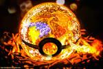 Pokeball of Mega Charizard Y