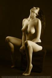 Soft Curves II Janis by aegipan