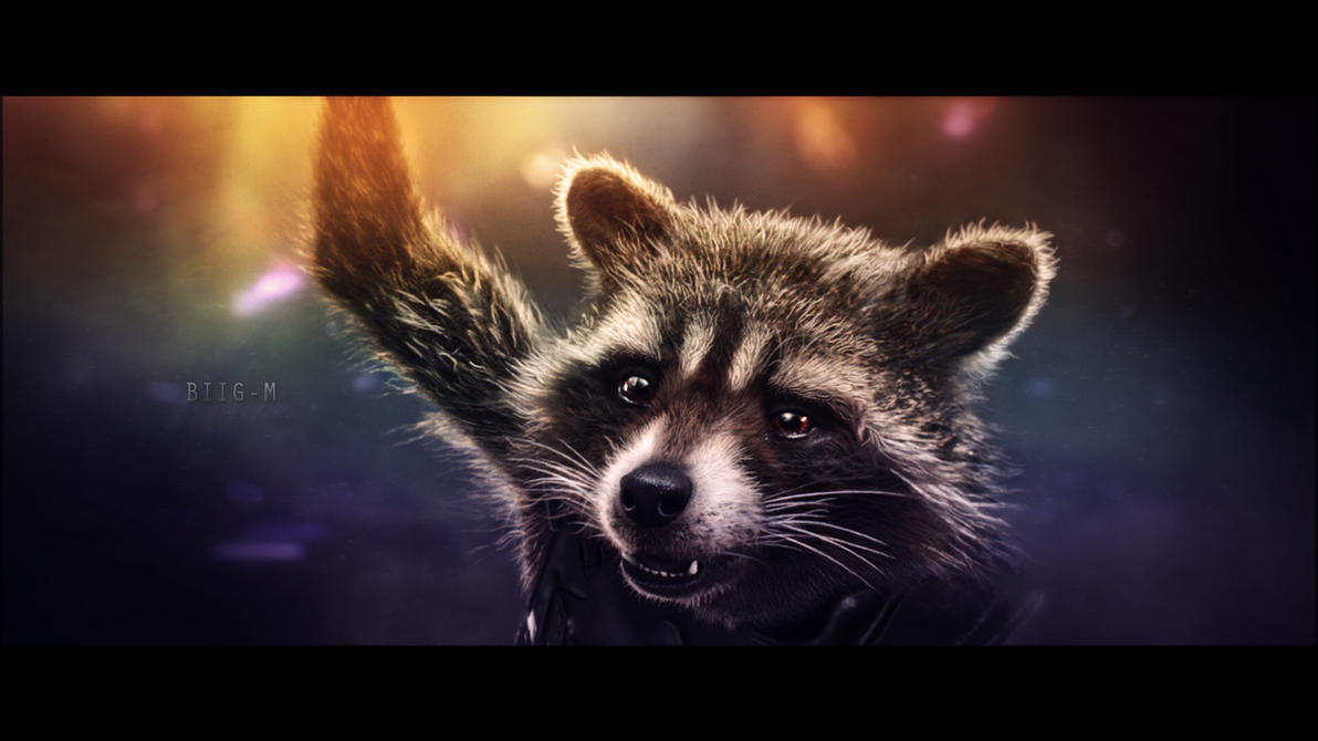 Rocket Raccoon wallpaper (9) by BiigM