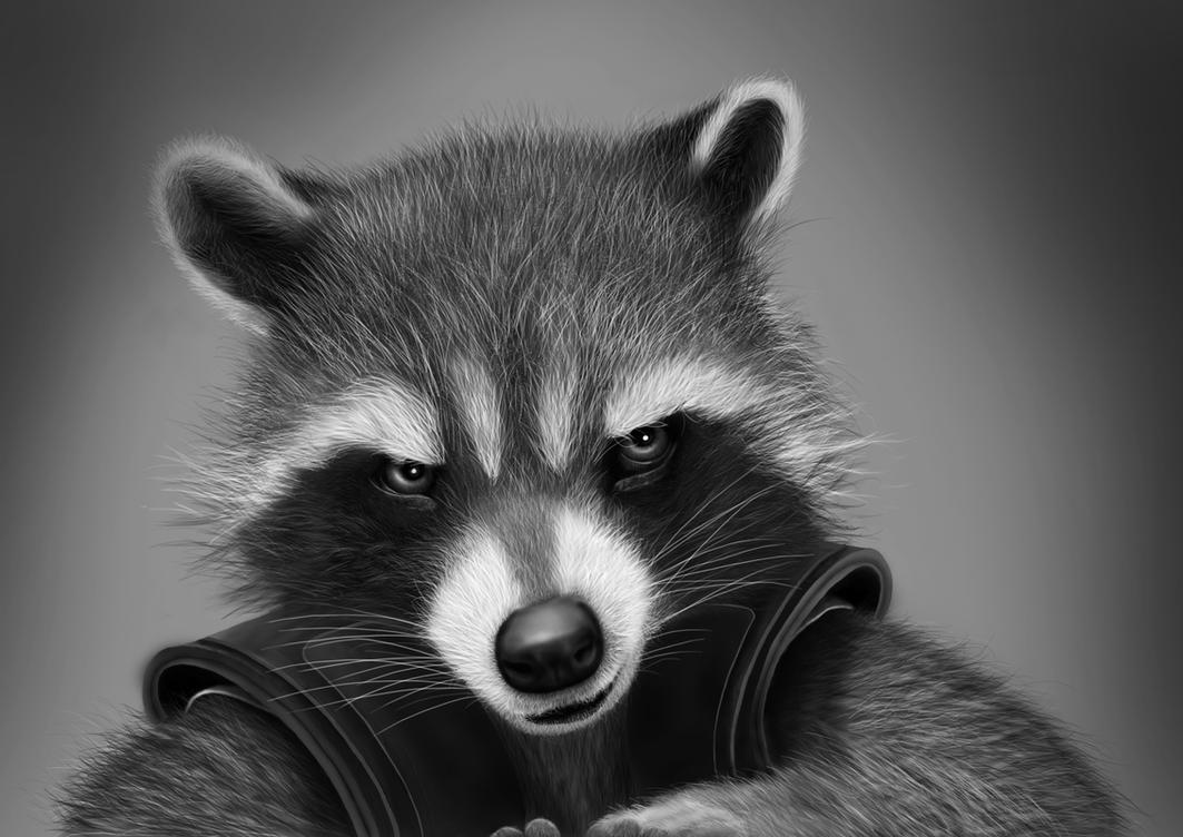 Rocket Raccoon - digital drawing by BiigM on DeviantArt Raccoon Drawing