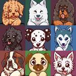 Year of the Dog - Dog portraits