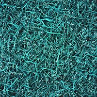 Metallic Teal Wire Overlay